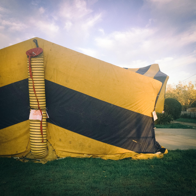 Termite Fumigation Tent